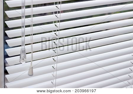 Fragment of the white Venetian blinds with lift cord and turning rod of a manual control on a foreground