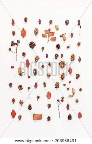 Autumn composition. Pattern made of autumn leaves acorn pine cones. Flat lay top view