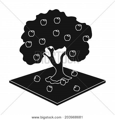 Apple single icon in black style. Apple vector symbol stock illustration .