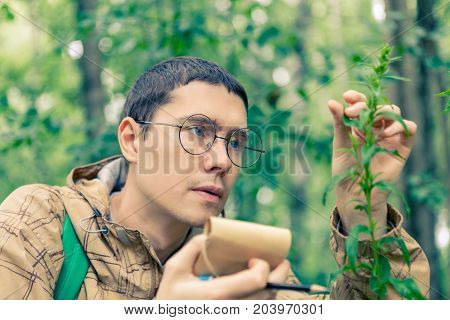 Toned picture of man with notebook and pencil studying plant in forest in summer afternoon