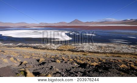 Laguna colorada in Altiplano. Bolivia south America