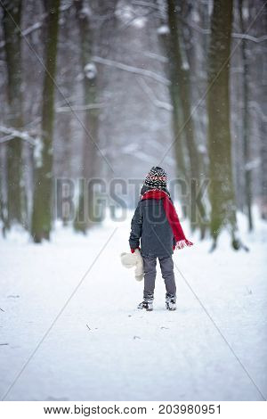 Sad Lost Child, Boy In A Forest With Teddy Bear, Wintertime
