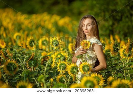 Woman among flowering sunflowers in the bright sun.
