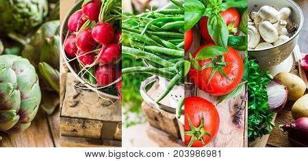 Collage set fresh organic vegetables herbs. Ripe tomatoes radish green beans artichokes mushrooms potatoes parsley garlic onions. Summer autumn fall harvest farmer's market organic produce.