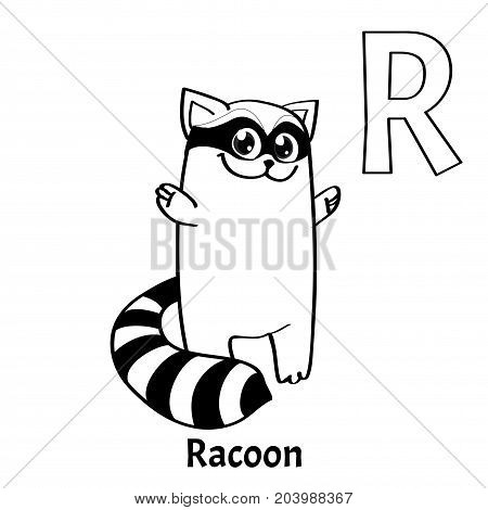 Vector alphabet letter R for children education with funny cartoon racoon. Isolated. Learn to read. Coloring page.