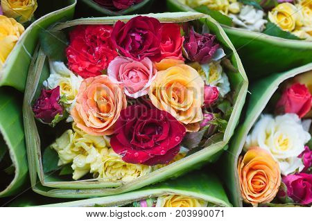 Rose mix Stylish mix of flowers horizontal  design frame. Green hydrangea, wild rose, camellia, orchid, peony, carnation, eucalyptus leaf, wildflowers. All elements are and editable.