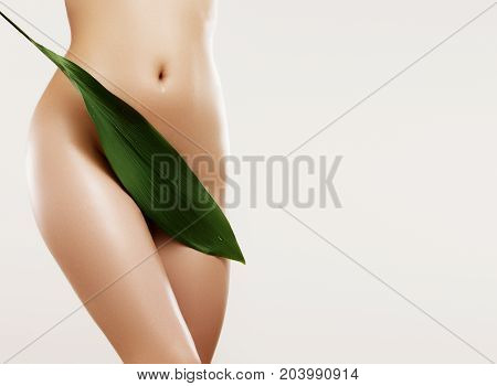 Body Care And Skin Care. Depilation Concept. Waxing For Beautiful Woman. Brazilian Laser Hair Remova