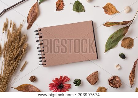 Set Of Autumn Dry Plants And Craft Sketchbook Mock Up