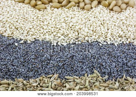 Poppy, sesame, fennel and pine nuts as food background