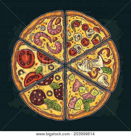 Set slice pizza Pepperoni Hawaiian Margherita Mexican Seafood Capricciosa. Vintage vector color engraving illustration for poster menu box. Isolated on dark background