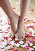 feet and rose-petals