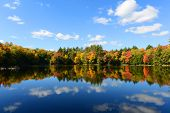 Church Pond in fall with foliage in town of Paul Smiths, Adrondack Mountains, New York, USA. poster