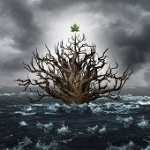 Concept of survival and business endurance as a drowning tree with one leaf above water as a life metapho for persistence to survive and overcome despair in a 3D illustration style. poster