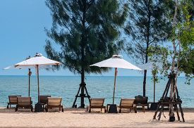Lonely tropical beach with beach chairs under white umbrella and pine trees