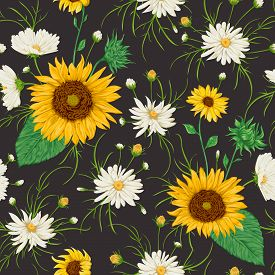 Seamless pattern with sunflowers and white chamomile flowers. Rustic floral background. Vintage vector botanical illustration in watercolor style.
