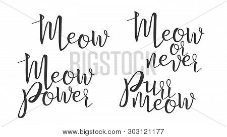 Modern Calligraphy Of Ink Meow Letters Vector. Stylish Typography Inscription Poster With Different Handwritten Meow Power, Never And Purr Elegance Text. Graphic Design Flat Illustration poster