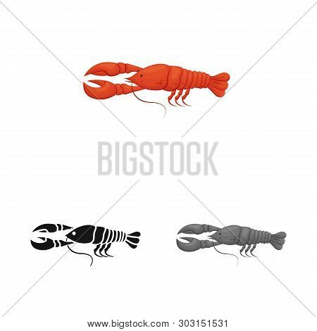 Vector Illustration Of Crayfish  And Lobster Sign. Collection Of Crayfish  And Boiled Stock Symbol F