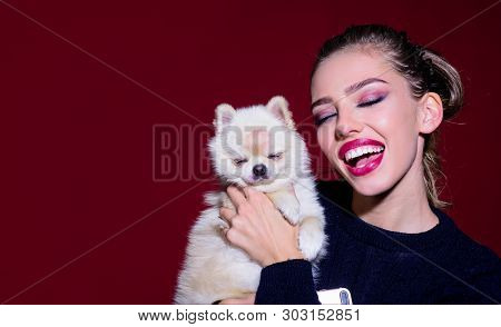Sexy Woman With Little Dog In Her Hand. Canine Breed. Girl With Bright Makeup Hugs Her Cute Puppy. L