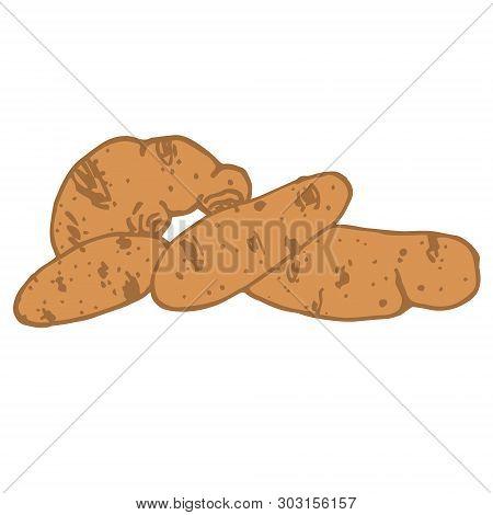 Monochromatic Color Vector Hand Drawn Potato Illustration. Starch Sketch Illustration For Print, Web