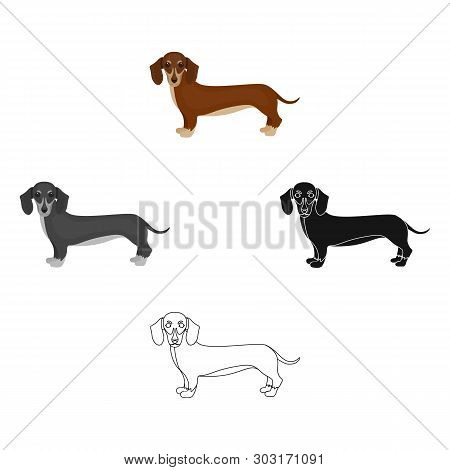Dachshund, Single Icon In Cartoon, Black Style.dachshund, Vector Symbol Stock Illustration Web.