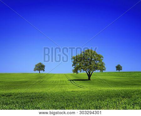 Beautiful nature landscape on blue sky