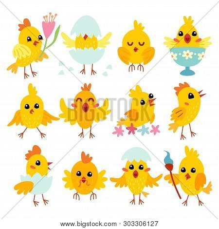 Colorful Easter Chicken Character In Cartoon Style.