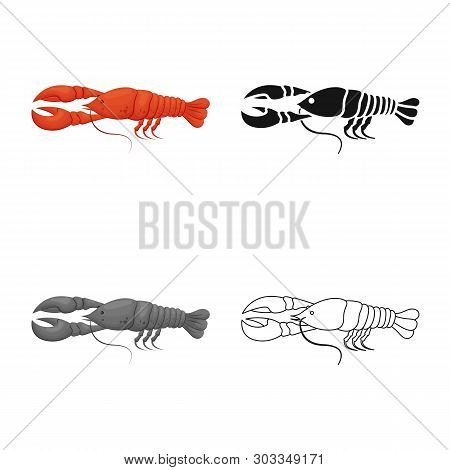 Vector Design Of Crayfish  And Lobster Icon. Set Of Crayfish  And Boiled Vector Icon For Stock.