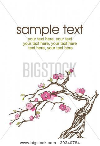 vector bonsai tree in blossom