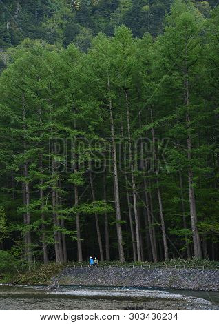 Idyllic Landscape Of Kamikochi National Park, Kamikochi, Japan