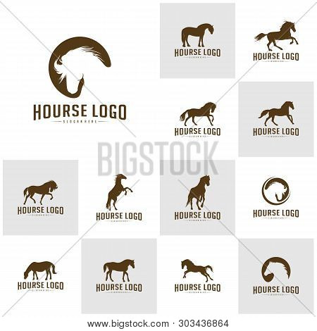 Set Of Horse Logo Design Icon Symbol. Horse Vector. Horse Silhouette