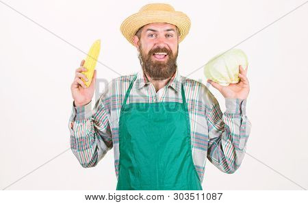 Farmer Straw Hat Hold Corncob Cabbage Vegetable. Fresh Organic Vegetable Harvest. Hipster Gardener I