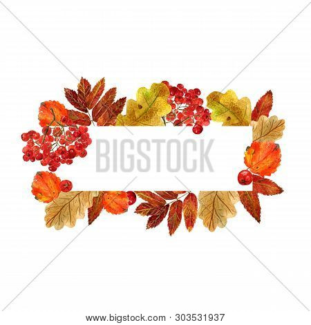 Watercolor Rectangular Frame With Autumn Leaves And Berries. Background With Fall Foliage, Rowanberr