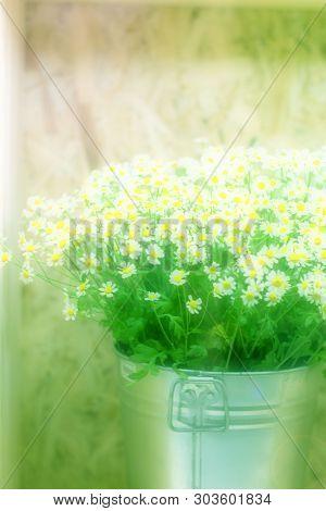 Unfocused Flowers. Blurred Floral Background.