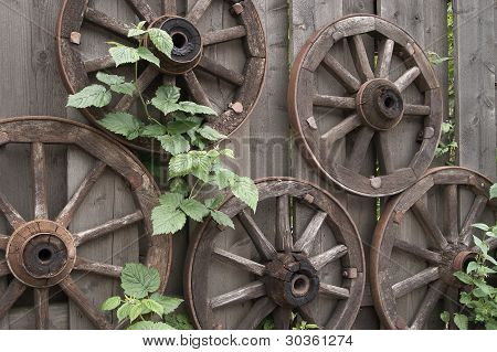 Woden Wagon Wheels And Green Leaves