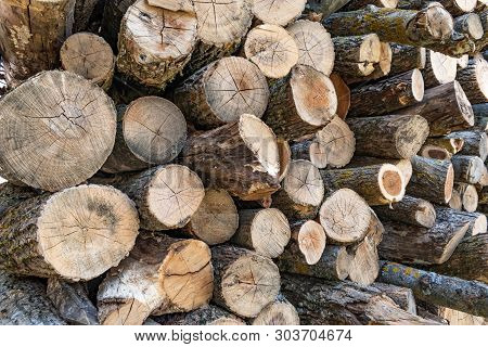Stock Photo Wall Firewood Background Of Dry Chopped Firewood Logs In A Pile Image