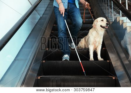 Blind Person With Long Cane And Guide Dog On Escalator Indoors