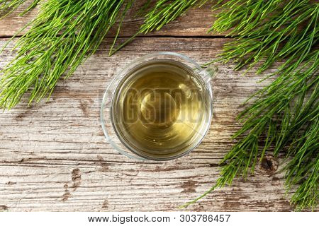 A Cup Of Herbal Tea With Fresh Horsetail Twigs, Top View
