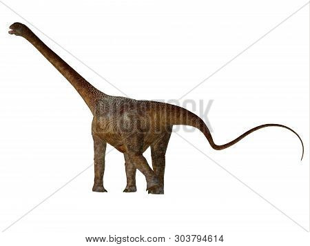Malawisaurus Dinosaur Tail 3d Illustration - Malawisaurus Was A Herbivorous Sauropod Dinosaur That L