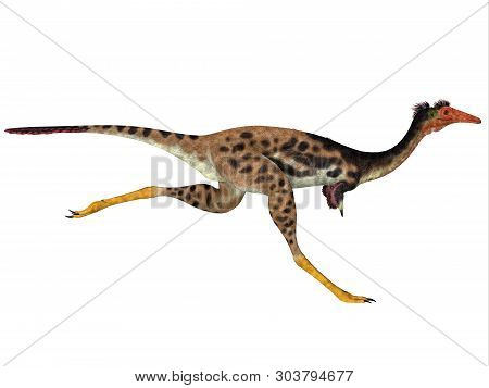 Mononykus Dinosaur Side Profile 3d Illustration - Mononykus Was A Carnivorous Theropod Dinosaur That