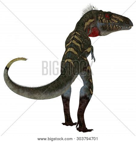 Nanotyrannus Dinosaur Tail 3d Illustration - Nanotyrannus Was A Carnivorous Theropod Dinosaur That L
