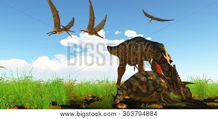 Albertosaurus Attacks Albertaceratops 3d Illustration - With A Vicious Neck Bite An Albertosaurus At