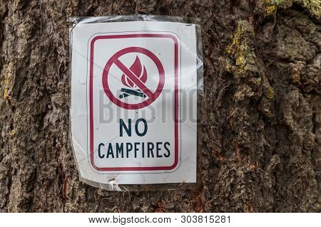 Paper No Campfires Sign Stapled To A Tree