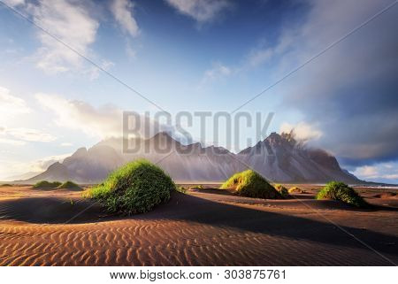 Gorgeous landscape with black sand desert dunes and grassy bumps near famous Stokksnes mountains on Vestrahorn cape, Iceland