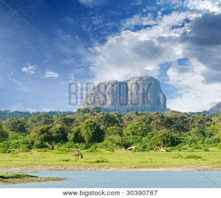 Mountain In The Shape Of An Elephant Figure