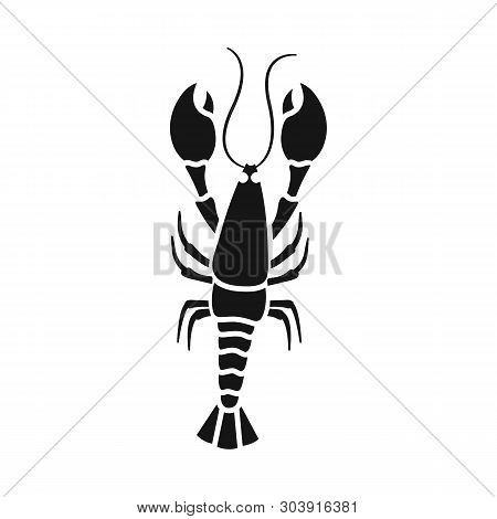 Vector Illustration Of Crayfish  And Lobster Sign. Set Of Crayfish  And Boiled Stock Symbol For Web.