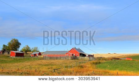 Barn in the middle of Prairies in Alberta,Canada