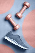 Mellow rose color dumbbells and Skyway color sneakers on the mat flat lay. Design for poster or banner. - Image poster