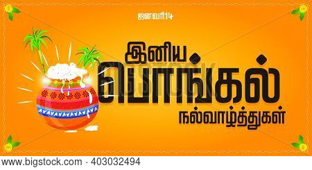 Happy Pongal Religious Festival Of South India Celebration And Happy Pongal Translate Tamil Text