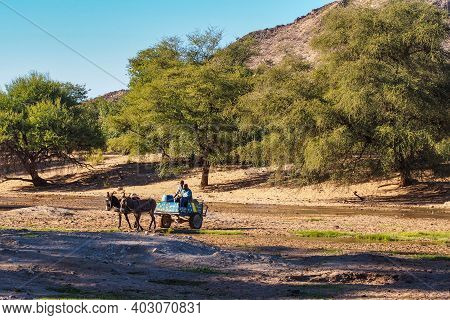 Sesfontein, Namibia - Jul 09, 2019: Namibian Men With Their Donkeys, Seen In Sesfontein In The Kunen