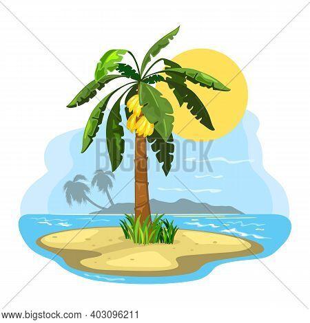 Summer Landscape, Banana Fruit Raised On Palm Tree. Vector Sand And Shining Sun Over Seascape, Oasis